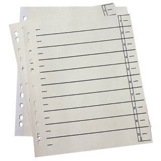 Trennblätter - A4 Überbreite, 190 g/qm Karton, chamois, 100 Stück
